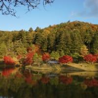 圧巻の景色「修学院離宮」の紅葉。一度は絶対にみたい京都を代表する紅葉