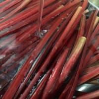 富士見高原産の真っ赤なルバーブのジャム♪♪