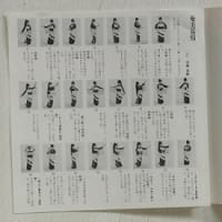 日本の南国唄 レトロ*九州、奄美、沖縄だ、ぬ~くぬく。