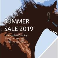 【サマーセール2019(Summer Sale)】の「事前公開資料」が公開!