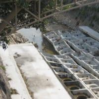 宮川の治水工事