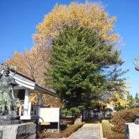 有鹿神社奥宮を探す