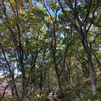 下見と秋の景色