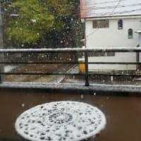雪が降っています