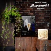 1/13 ブログ内に表示の撮影価格について 札幌写真館フォトスタジオハレノヒ