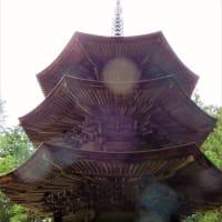 2019・7・7 長野の素敵な建造物 上田市・安楽寺八角三重塔 日本で唯一の八角塔 国宝