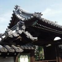 尼崎市・寺町「甘露寺に・・・金色の鳳凰がありました!」