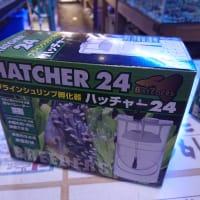 未使用ブラインシュリンプ孵化器 ハッチャー24