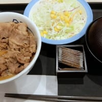 <gourmet>松屋 プレミアム牛めし