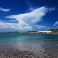 4.夏の海
