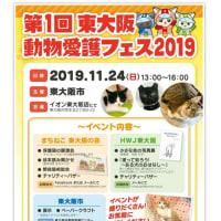 第1回 東大阪動物愛護フェス2019 に参加します!