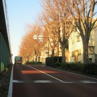 旧東海道・戸塚宿歴史散歩