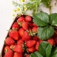 『春の美味!イチゴ・苺・ストロベリー』