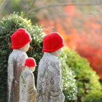 井山宝福寺:紅葉終盤へ