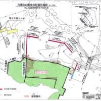 沖縄県は、17日の大浦湾の一面の赤土拡散の原因調査を行うべきだ!