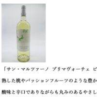 2020.05.15 SFVCEオンライン2on2大会「バルバ杯」について