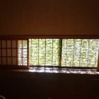 木の芽の奥の部屋でランチ