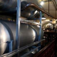 独マインツのビール醸造所でビールを飲む