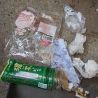ゴミ拾い日記200329~200404