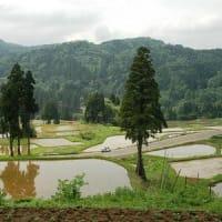 日本棚田百選松之山を訪ねて