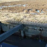 田んぼの暗渠排水