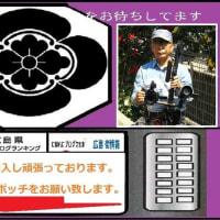2019・愛媛県・四国88ヶ所巡礼ブログ旅回想記~第40番・観自在寺参拝記②!