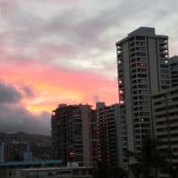 ハワイ行ってきました☆