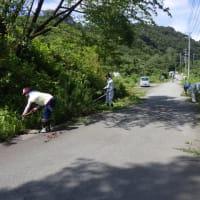 大蘇ダム周辺及び管理用道路の清掃活動に参加しました