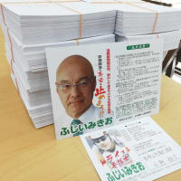 参議院議員通常選挙(和歌山選挙区)