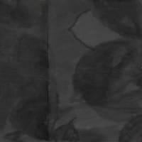 龍樹『中論』の十二支縁起が説く相互依存的な世界