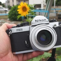 銀塩フィルムカメラがある生活 ~総集編