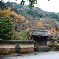 鳥取城址 久松公園