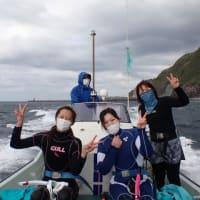 2021.4/9-11 御蔵島ドルフィンスイムツアー