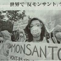 "#akahata 世界で「反モンサント」デモ/""公平・無害な農産物を""・・・今日の赤旗記事"