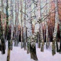 estoy loco por espana (番外45)Pedro Taracena の写真(白樺の林)