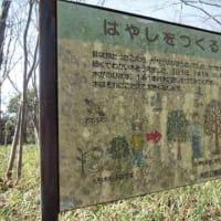 1/21 汐見台~久良岐公園を歩く