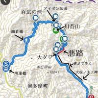 川乗橋~川苔山~鳩ノ巣駅