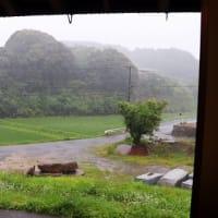 雨足が強くなりました