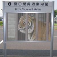駅周辺案内図~その5