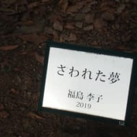 上野「コートルード」展・上野公園から銀座へ・琉球絣&博多