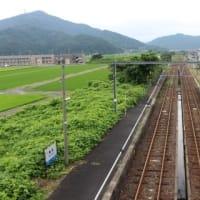 JR西日本 美浜駅