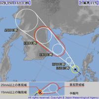 台風11号 ①