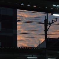 夕暮れ時、、【西国分寺駅:武蔵野線】 2020.NOV