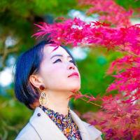 「美しい変化」 楓