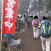 今日の山頂は萱場平,でも美女と右往左往の丹沢;塔ノ岳(2019年21回目)