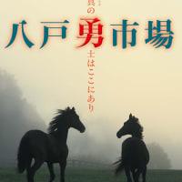 【八戸市場2019(Hachinohe Sale、1歳)】の「上場馬一覧」が発表!(39頭)
