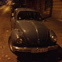 Beetle in the world