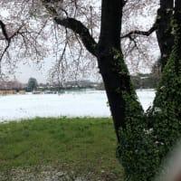雪の旧NHKグラウンド