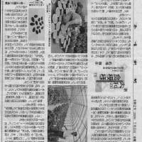 奈良に由来の種子を保存する「大和野菜研究センター」