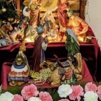 2021年1月24日(主日)前後の聖伝のミサの予定:Traditional Latin Mass for January 24, 2021